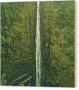 'akaka Falls Wood Print