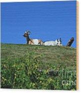Al Johnsons Resturant Goats Wood Print