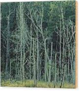 Alabama Autumn Marsh Wood Print by Maria Urso