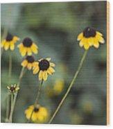 Alabama Black Eyed Susan Wildflowers Wood Print