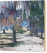 Alabama Fort Jackson Wood Print