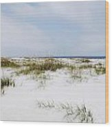 Alabama Point 1 Wood Print