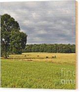 Alabama Valley Wood Print