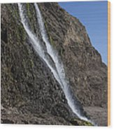 Alamere Falls Wood Print by Garry Gay