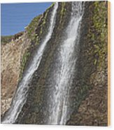 Alamere Falls Pacific Coast Wood Print