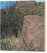 Alamo Canyon Hike Wood Print