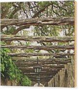 Alamo Walkway Wood Print
