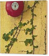 Alarm Bell And Vines Yellow Wall Wood Print