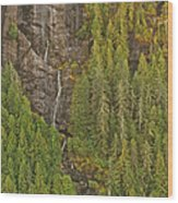 Alaska 8962 Wood Print