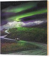 Alaska Aurora Denali Highway Wood Print