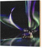 Alaska Aurora Unpredictable Spirals # Da 099  Wood Print