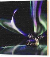 Alaska Aurora Unpredictable Spirals        Wood Print