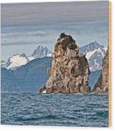 Alaska Coastline Landscape Wood Print
