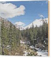 Alaska Country Wood Print