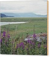 Alaska - Juneau Wetlands Wood Print