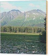 Alaska Lake 2 Wood Print