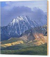 Alaska Range And Foothills Denali Wood Print