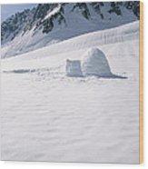 Alaska Range And Glacier With Igloo Wood Print