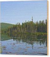 Alaska River Swamp Wood Print