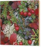 Alaskan Berries 2 Wood Print