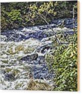 Alaskan Creek - Ketchikan Wood Print