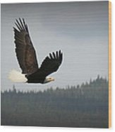 Alaskan Flight Wood Print