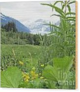 Alaskan Glacier Beauty Wood Print