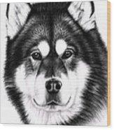 Alaskan Malamute Portrait Wood Print