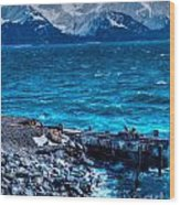 Alaskan Ocean Wood Print