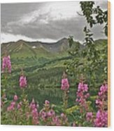 Alaskan Summer Wood Print