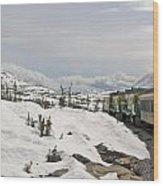 Alaskan Trainride Wood Print