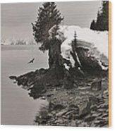 Alaskan Winter Coast Wood Print