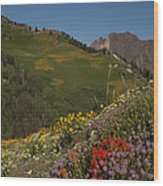 Albion Basin Summer Wood Print