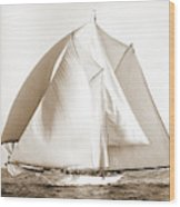 Alcaea, Alcaea Schooner, Yachts Wood Print