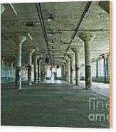 Alcatraz 5 Wood Print by Micah May