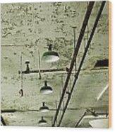 Alcatraz 6 Wood Print