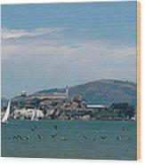 Alcatraz With Pelicans Wood Print