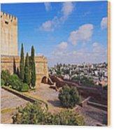 Alcazaba In Granada Wood Print
