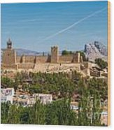Alcazaba Wood Print