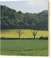 Alderton Hill Wood Print