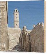 Aleppo Citadel In Syria Wood Print