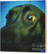 Alex Has A Dog Wood Print by Jackie Bodnar