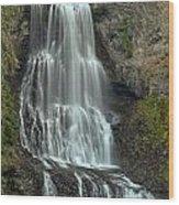 Alexander Falls Recreation Site - Whistler Bc Wood Print