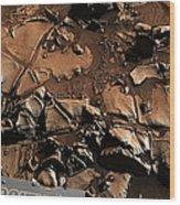 Alexander Hills Bedrock In Mars Wood Print