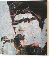 Alexander With Sax Wood Print