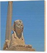 Alexandria Egypt Wood Print