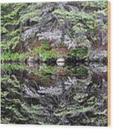 Algonquin Mirror Wood Print