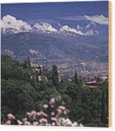 Alhambra View Wood Print