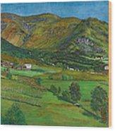 Alhustunet. Jolster Wood Print