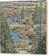 Alice Creek Wood Print